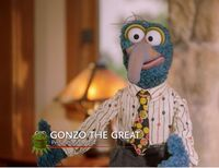 Gonzo-propculture