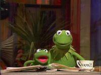 409 frog opera