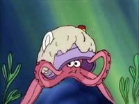 MB402-Octopus02