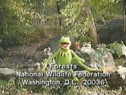 Nwf-critters