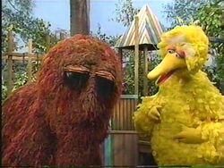 Episode 3465 | Muppet Wiki | FANDOM powered by Wikia