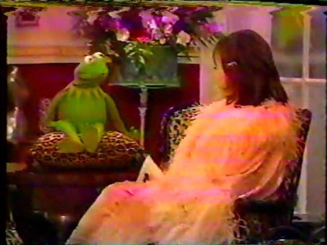 Kermit on The Roseanne Show