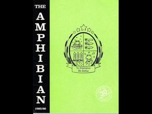 Theamphipian