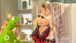 Qvc piggy you're the product 1