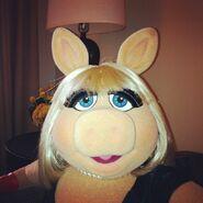 Instagram miss piggy