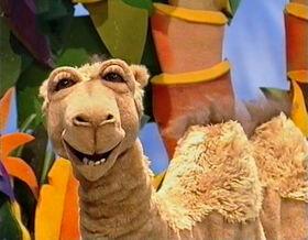 Doreen the Camel