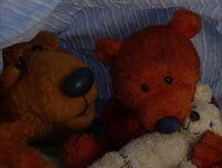 Bear214f