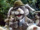 Mayor Bunnyparte