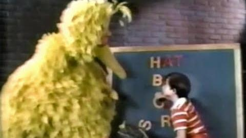 Big Bird in Kids Like These