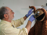 Howard clemenko rowlf