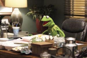 Kermit's office 2015