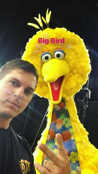 Big Bird & Paul