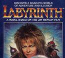Labyrinth (novel)