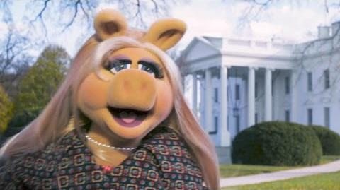 Miss Piggy Goes To Washington