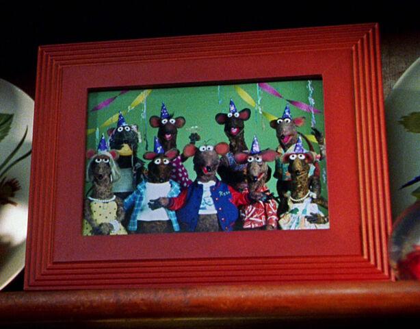 File:Rat family portrait MFS.jpg