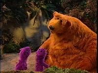 Bear307c