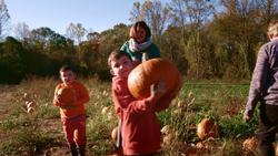 FoodieTruck-Pumpkin02