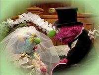 3623 wedding