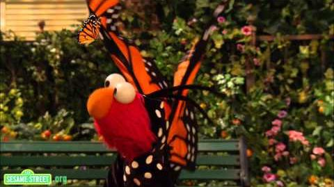 Sesame Street Song Little Butterfly Friend