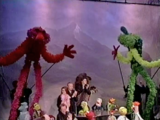 Live Muppet stage shows