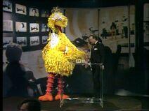 BigBirdLogie1980
