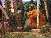 Bear205e