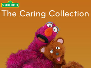 TheCaringCollection