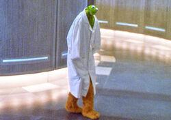 Kermitdoctor edited