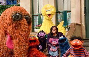 Sesame-SNL-2015