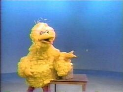 BigBird.Catch!