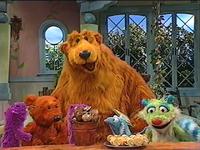 Bear310h