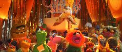 OrangeShow