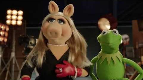 The Muppets on QVC!