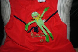 Danskin 1979 kermit dress 3