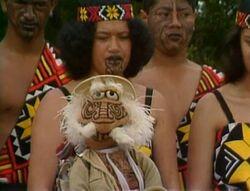 Matt maori