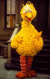 Big-bird-sesame-street hdi8al