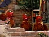 Clucky Clucky Chicken