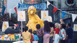 Big Bird for President