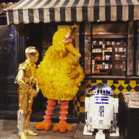 Bird and droids