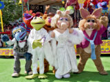 Muppet*Vision 3D openings