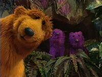 Bear233f