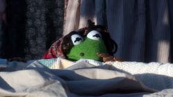 Kermit laundry lady MMW