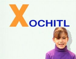 Xochitl2