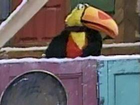 ESC-toucan
