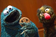 Smithsonian cookie grover