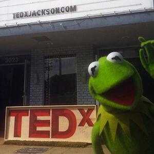 Kermit TED Nov 6 2014