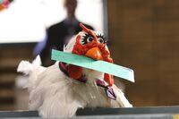 LTS-Chicken-USPS-Worker