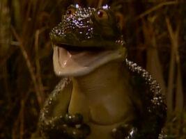 MGS-Nimble-Frog