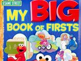 My Big Book of Firsts