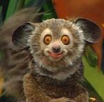 Episode 126: Manatee & Lemur